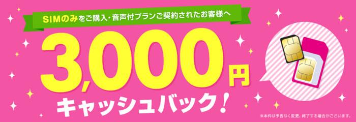 3000円キャッシュバック