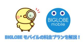 BIGLOBEモバイルの料金プランを解説