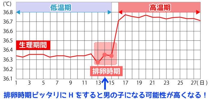 基礎体温グラフ男の子