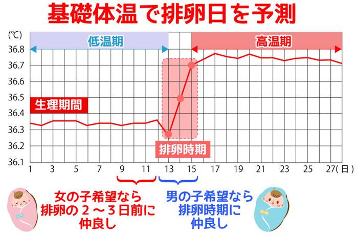 基礎体温で排卵日を予測