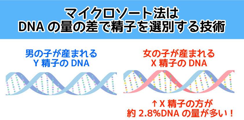 マイクロソート法はDNAの量の差で精子を識別する技術