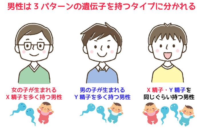 男性は3パターンの遺伝子を持つタイプに分かれる